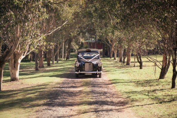 a-cabby01 - Exclusive Vintage Wedding Cars Hunter Valley Vintage Wedding Car Hire Pokolbin Lovedale Maitland Newcastle Cessnock