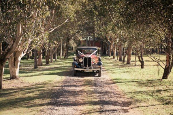 a-clyde01-min - Exclusive Vintage Wedding Cars Hunter Valley Vintage Wedding Car Hire Pokolbin Lovedale Maitland Newcastle Cessnock